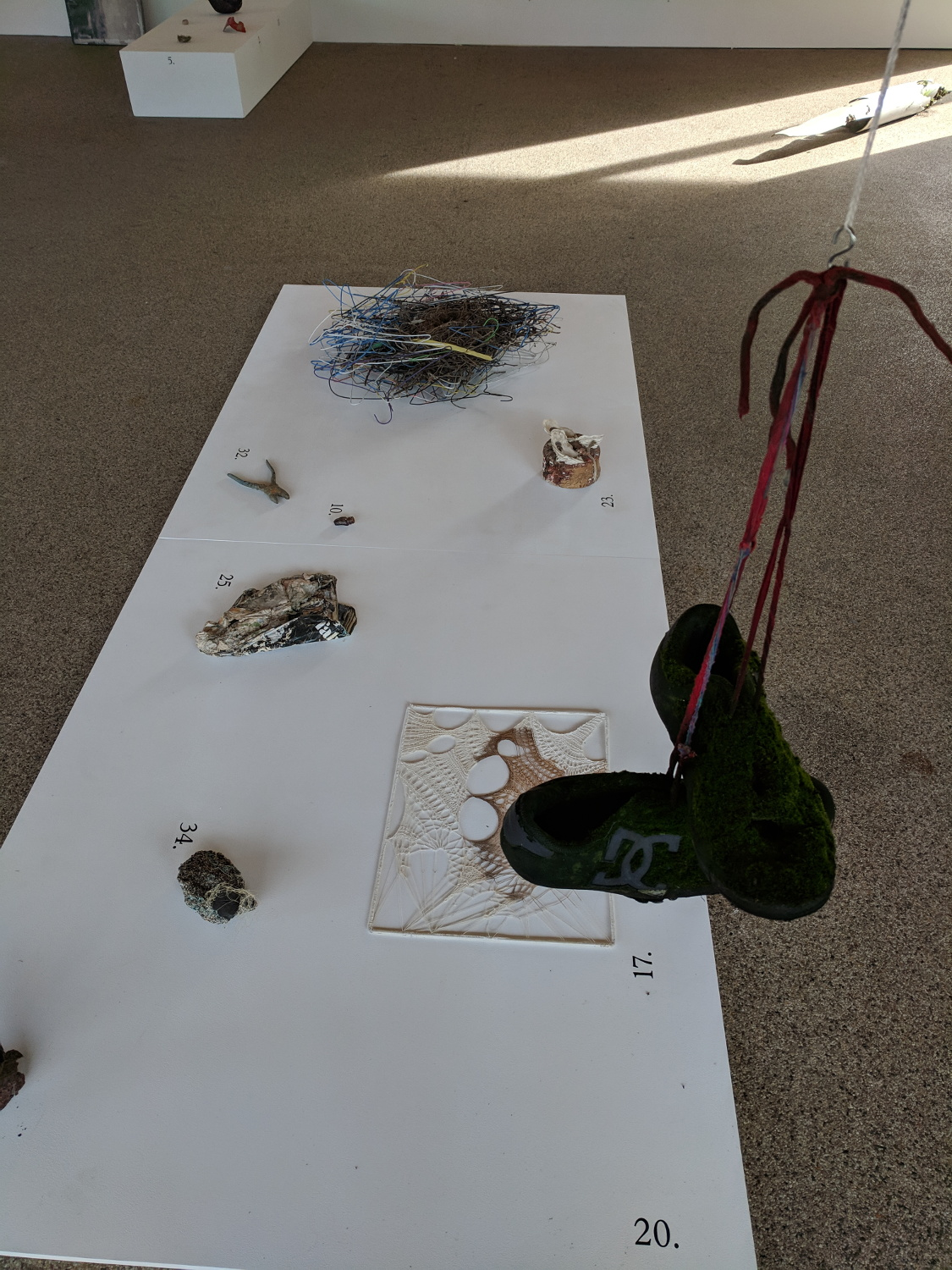 A table containing natured items
